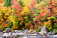 Cascades with Fall Foliage